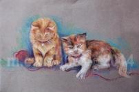 MCWEBBER Kittens at Play - Pastel