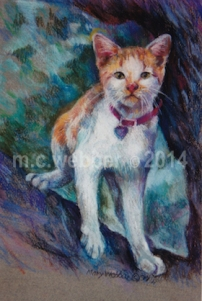 MCWEBBER Outdoor Cat - Pastel