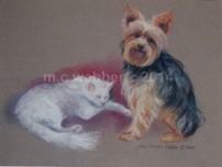 MCWEBBER cat and dog - Pastel