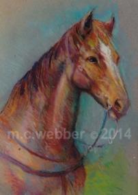 MCWEBBER Equestrian Study - Pastel