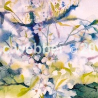 MCWEBBER Wonder of Spring - Watercolor